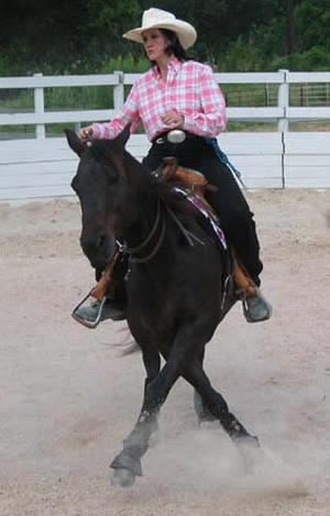There's nothing like a well-crafted email marketing campaign or a well trained horse! Look Ma - no bridle!