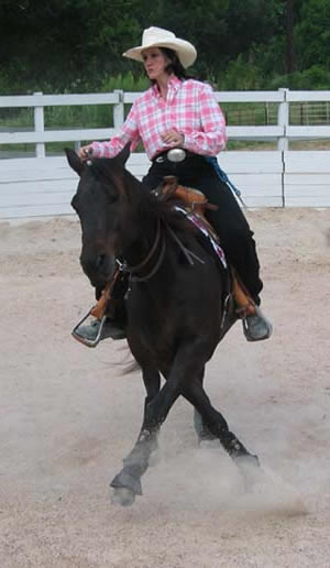 There's nothing like a well-crafted website or a well trained horse! Look Ma - no bridle!